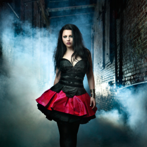 Amy Lee Corset Dresses